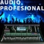 Audio Profesional