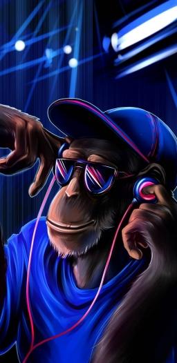 Monkey_fun-ed8ca14d-9cdd-4b66-b5cd-549ff7c853a3.jpg